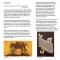 UTT-Brochure_singles_web4